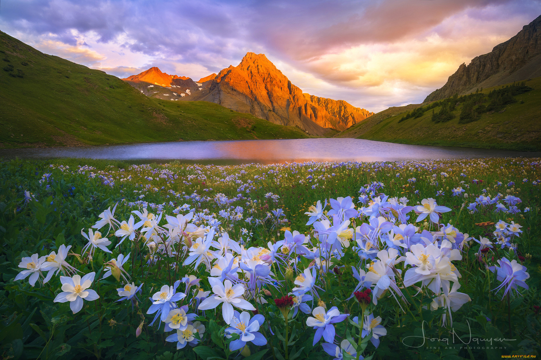 Картинки пейзажи с красивой природой и цветами